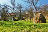 Местные окрестности деревенской Сербии