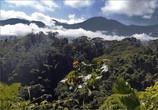 В горах Сьерра-Невада-де-Санта-Марта