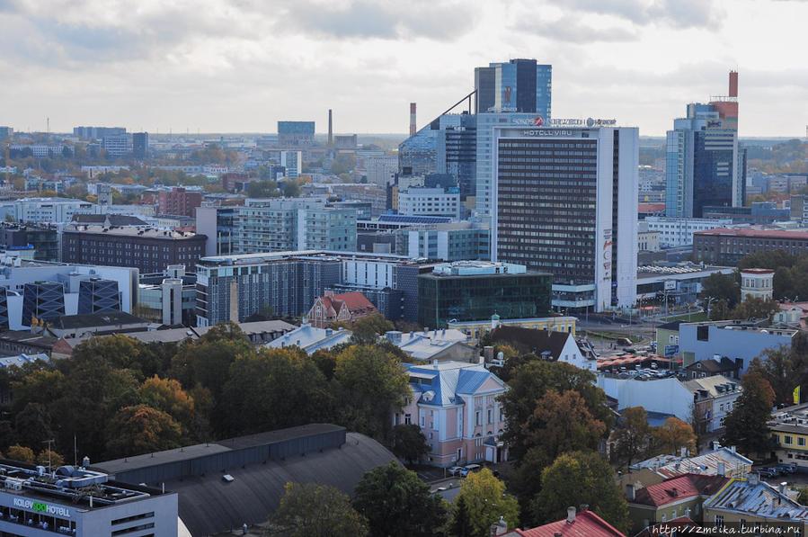 Поворачиваемся к Новому Таллину, здесь множество высоток — отели и бизнес-центры.