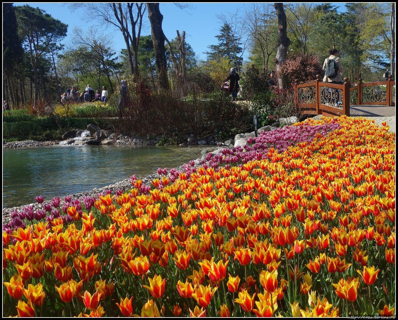 Эмирган Парк Стамбул, Турция