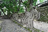 Стена вокруг бассейна Фасилидаса