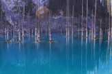 А вот и собственно само озеро Каинды.