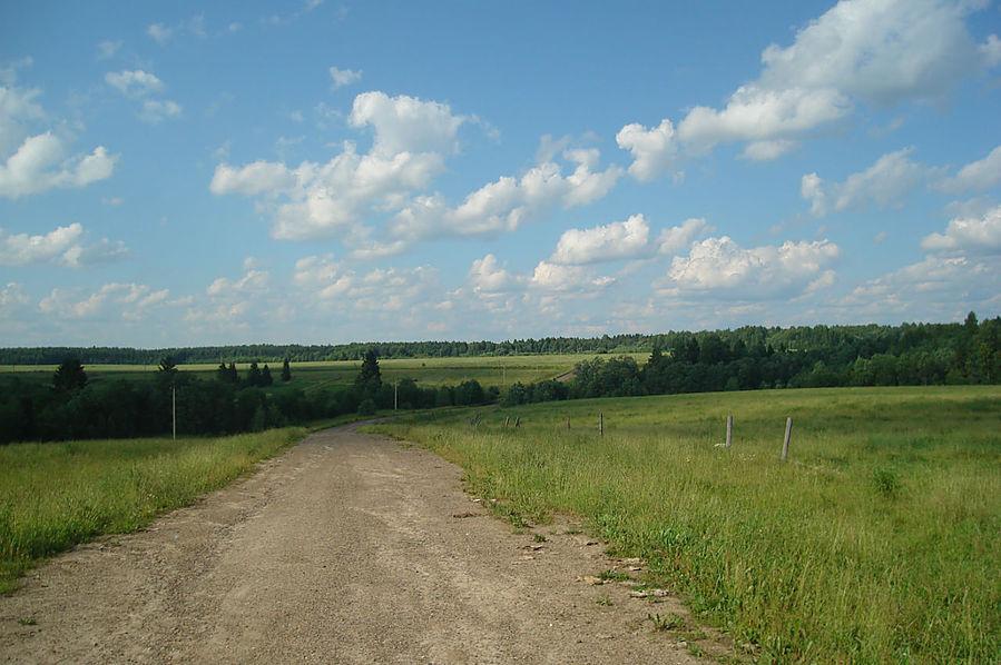 дорога от старого коровника в Липихино Солигалич, Россия
