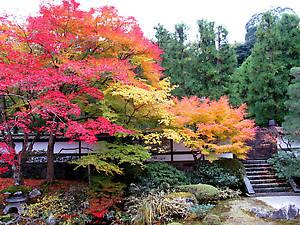 В одном из храмовых садов.