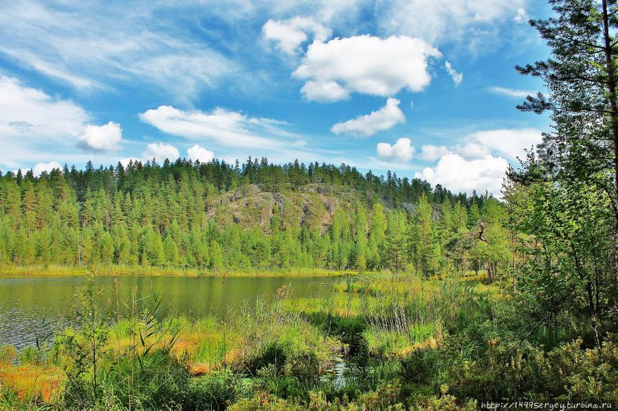 Озеро Питкяярви и его тайны Провинция Южная Карелия, Финляндия