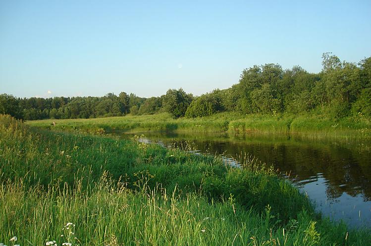 река Кострома начинается