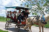 Школьный автобус в одну лошадиную силу