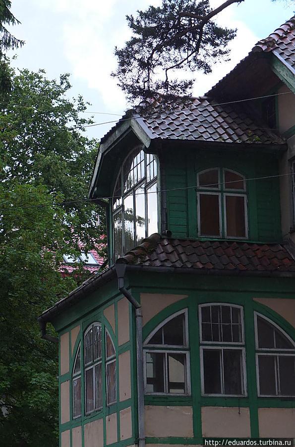 Хочется жить в этой красоте — Светлогорск Калининградская область, Россия