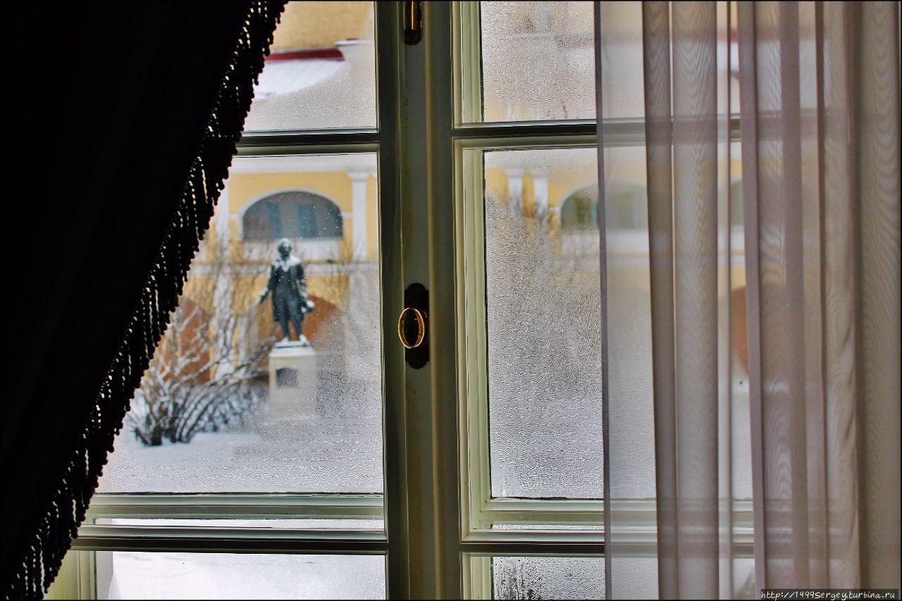 Окно в квартире-музее Пуш