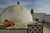 крыша магазина ковров. и нечто песочного цвета — роза пустыни.  Долгое время думали, что минерал