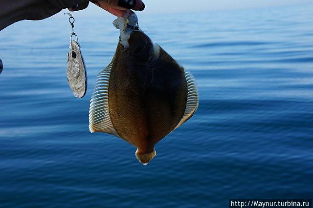 все для рыбалки южно сахалинске
