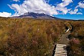 Вид на вулкан Ruapehu (2797 м) — самый крупный из активных вулканов Новой Зеландии. Последнее извержение было в 2007 году.