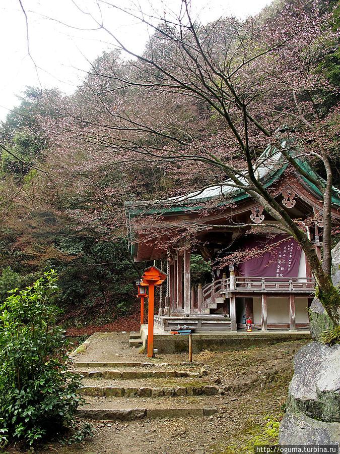 Один из храмов наверху. На фото не видно, но слева от него гора резко обрыватся вниз и по сути, от его ступенек открываеется прекрасный вид на низину Киото, Япония