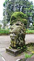 Университет, эфиопский лев