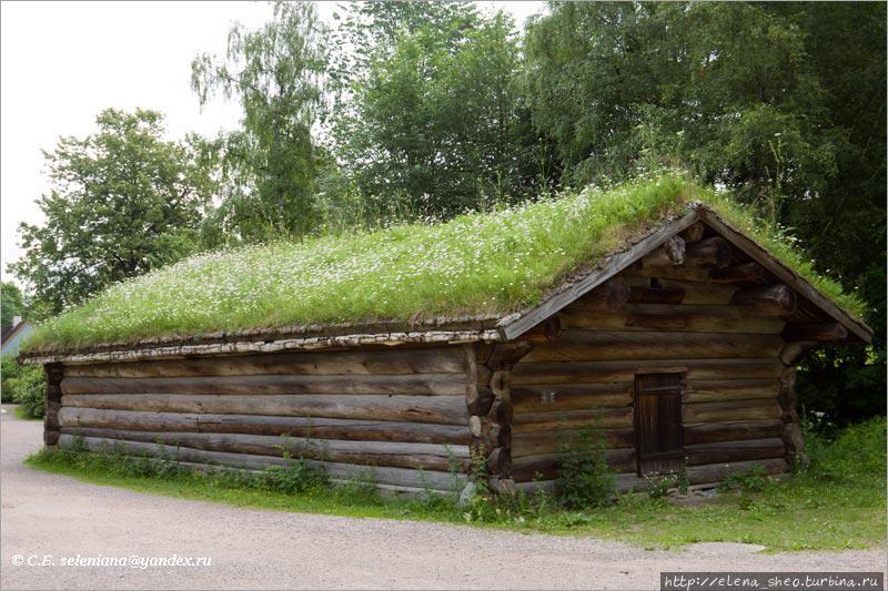 13. Какой-то сарайчик-амбарчик, привлекший моё внимание тем, что крыша у него не просто травяная, а ромашковая. На ней хорошо и дружно, словно на обычном лугу, растут ромашки. Это вершина в существовании травяных крыш! Круче могут быть только крыши, на которых растут деревья. Такие тоже бывают, я их видела.