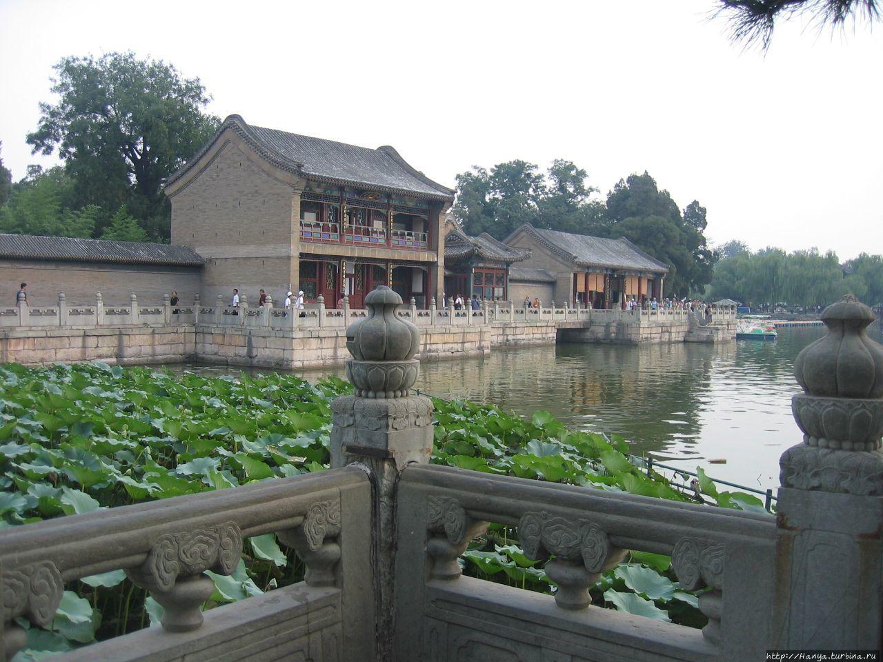 Парк Ихэюань Отцветшие ло