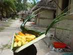 У каждого домика всегда была корзина с тропическими фруктами