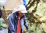 Шустрые непальцы проносились мимо так быстро, как автомашина на трассе