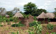 Замбийская деревня