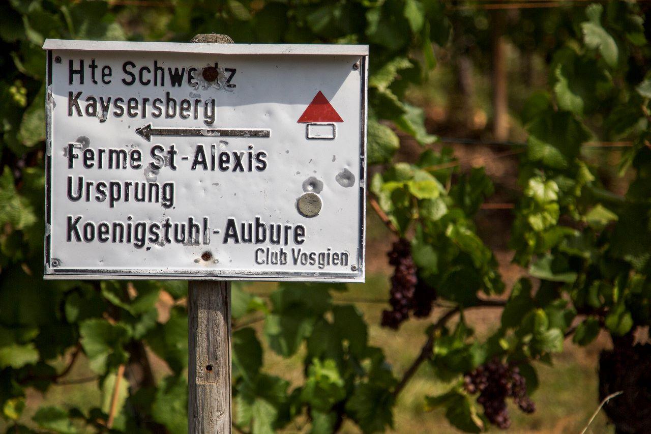 Немного Эльзаса в холодном вине Рикевир, Франция