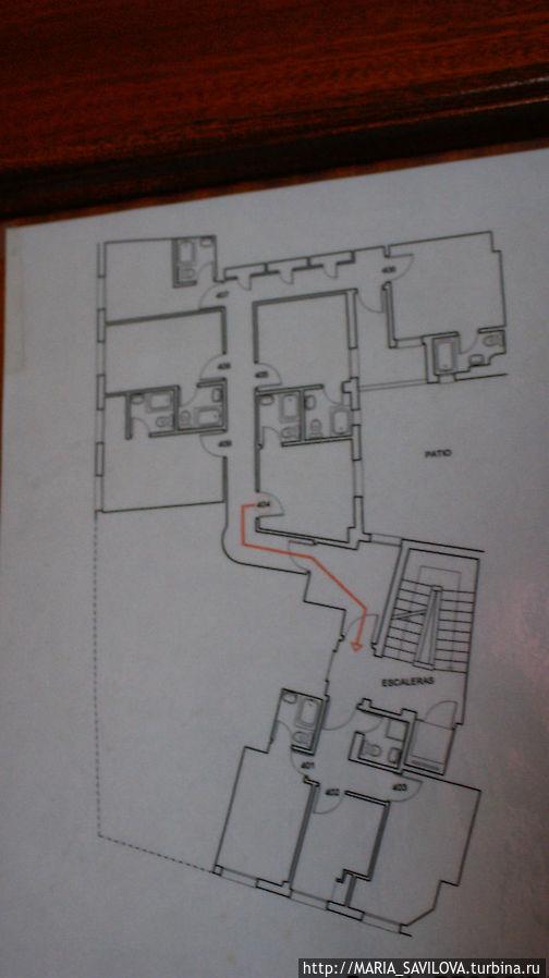 это схема нашего четвертого (пятого) этажа. Наш номер — 404
