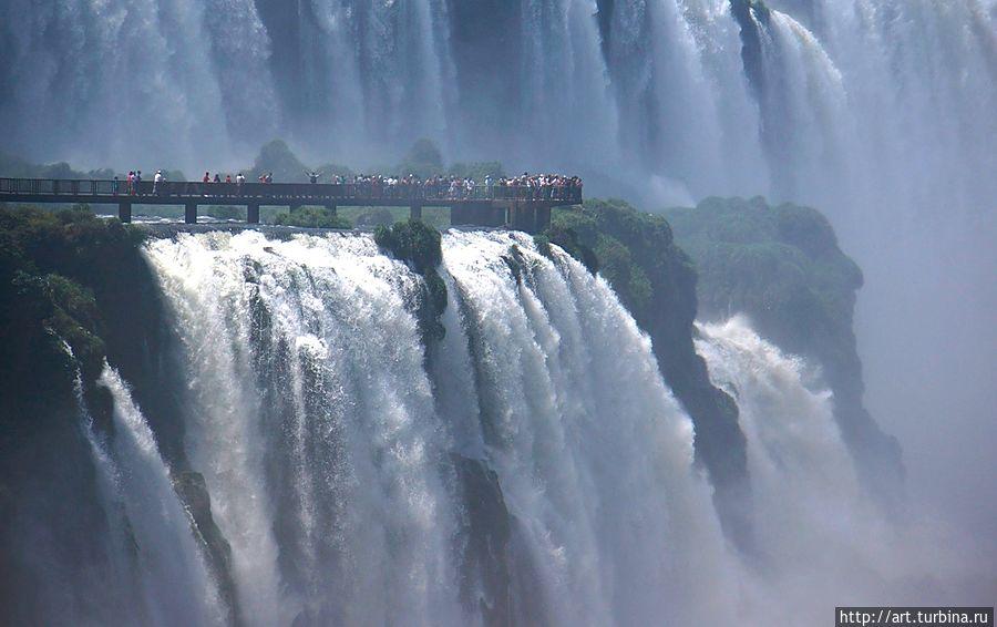 Вода- это жизнь Игуасу национальный парк (Аргентина), Аргентина