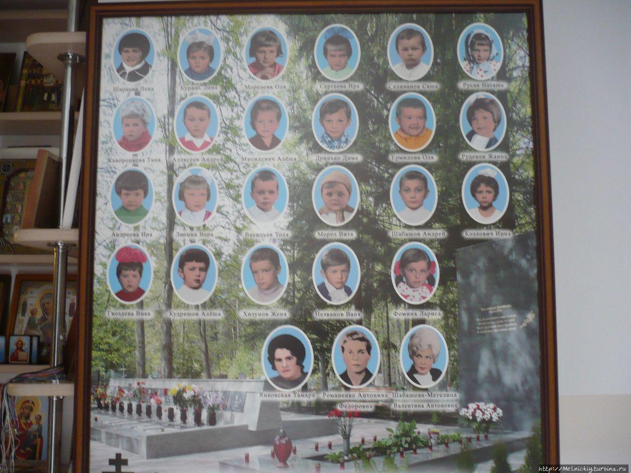Светлогорск авиакатастрофа фото детей