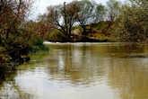 Река Сангария.