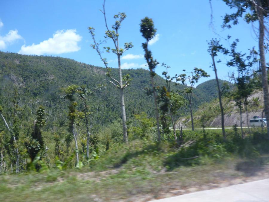 Край орущих петухов. Первый день в Короне. Горячие источники Корон, остров Бусуанга, Филиппины