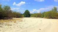 По берегам Десны много песчаных отмелей и песчаных круч и на любой машине здесь не проехать