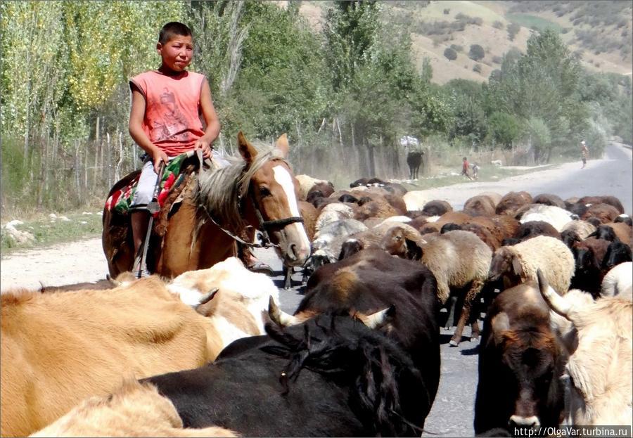 Затор на дороге Арсланбоб, Киргизия
