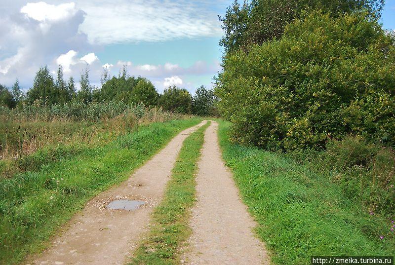 Самое начало тропы — полноценная сельская дорога. По левую сторону расположена система прудов.