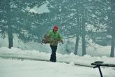 Мужик тащит ветки граба. Сербское традиционное рождественское дерево. Накануне приносят в дом и потом сжигают в печи или на костре.