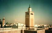 На террасе мечети Аль Зайтуна