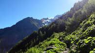 Чем выше в горы, тем меньше растительность, это все знают. Здесь высота около 1700 метров, скоро будут кончаться деревья, однако, я не мог представить, какие красоты начнутся после деревьев.