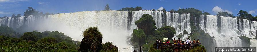 Некоторые раскидывают свои крылья очень широко Игуасу национальный парк (Аргентина), Аргентина