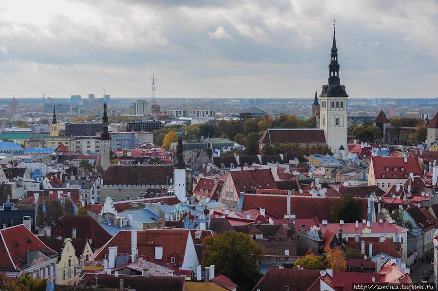 И снова в Старый город! Перечислим шпили слева направо: Церковь Святого Иоанна, Ратуша, Церковь Святого Духа, Церковь Святого Карла в Таллине (позади Нигулисте),  Церковь Святого Николая (Нигулисте).