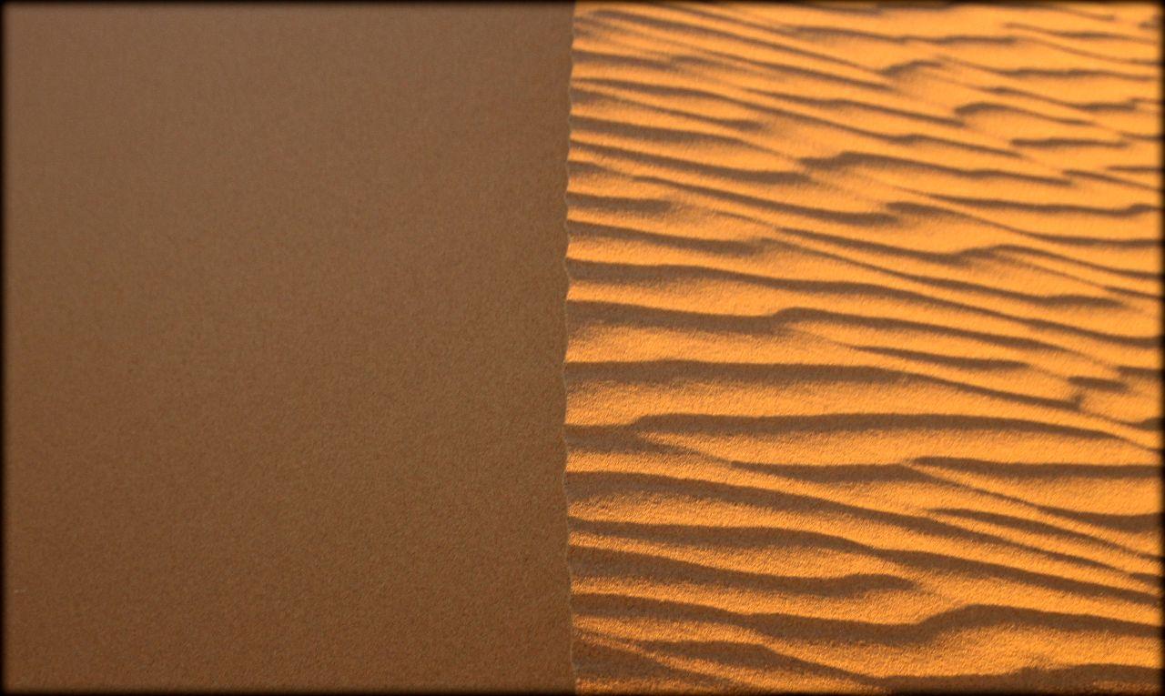 Алжирская Сахара, день четвёртый — петроглифы и миражи