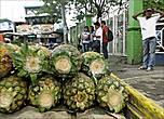 А это уже ананасы. Я делаю выбор в их пользу. Они намного дешевле дуриана,  не говоря уже о вкусе
