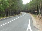 Дорога в Национальном парке.