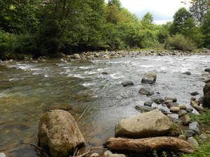 Довольно симпатичная горная речка, которая судя по картам также называется Отап