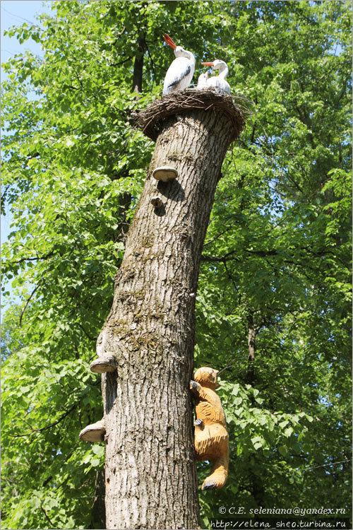 21. Деревянный кот лезет