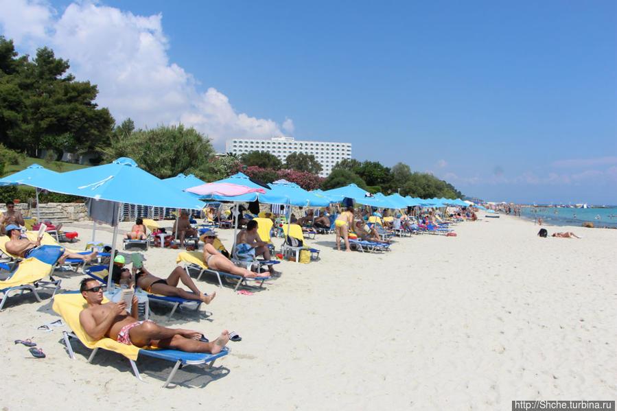 наш пляж, зонтик и два лежака — 8 евро, возле бассейном бесплатно