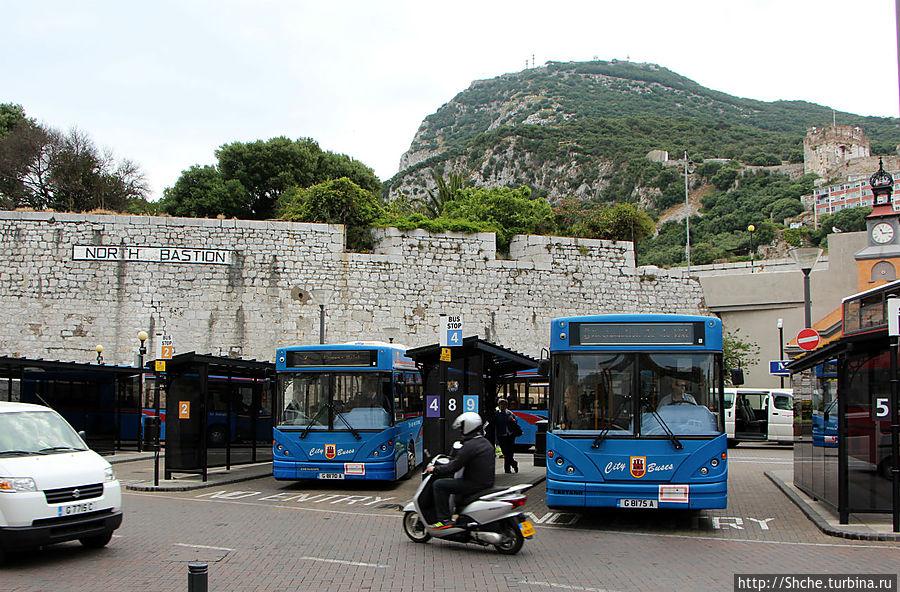 Market Place — центральный автобусный терминал