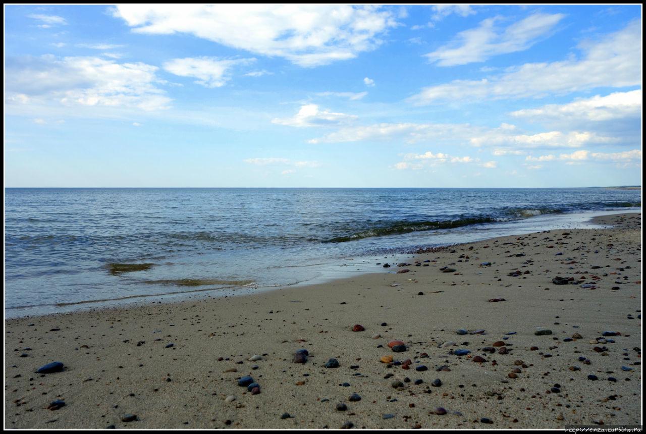 Пляжи Куршской косы Куршская Коса Национальный Парк, Россия