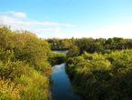 Вообще, ранняя осень в Карелии — самое красивое время. Дождей мало, растительность ещё буйствует, а яркие краски набирают силу.