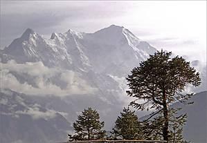 И вот мы на вершине очередной горы в деревушке  Чолонгпати (3584 м), служащей своеобразной границей между долиной Лангтанг и хребтом Лауребина, где находятся озера. Собственно это даже и не деревушка, а всего лишь два домика для ночлега. Отсюда открываются замечательные виды на горы Лангтанга, с одной стороны (на фото), и Госайкунд, с другой (фото №1)