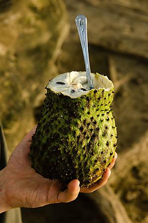 Тропический фрукт, по вкусу совершенно несъедобный. Возможно потому, что ещё не поспел.