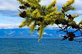 Цвет Байкала