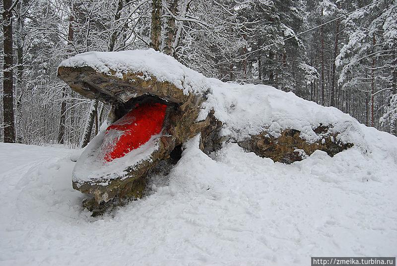 А это Крокодил, рядом еще один есть, но сейчас он под снегом)